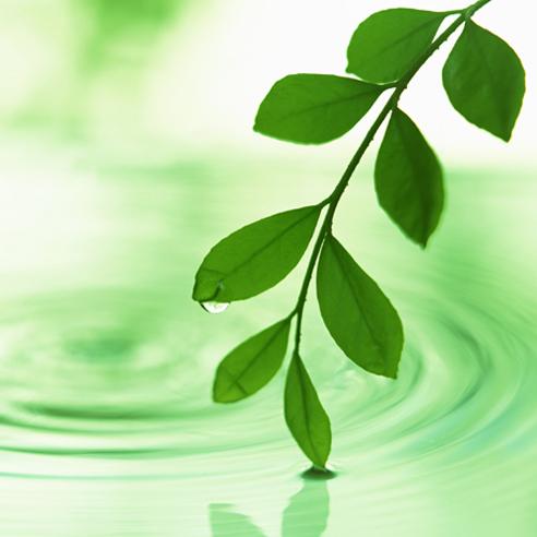CO2削減・資源節約